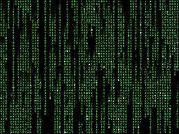 l break into program assembly language